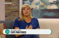 ► LOS POLÉMICOS CHIPS PARAS PERROS
