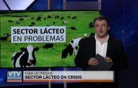 Análisis: Sector lácteo en crisis
