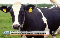 Crisis en sector lácteo: Parmalat defiende la importación desde Brasil